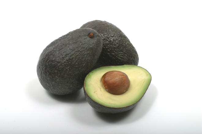 Hawaii avocado industry expects growth as exports begin…